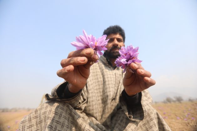 Kashmir's New Land Laws Could Impact Biodiversity
