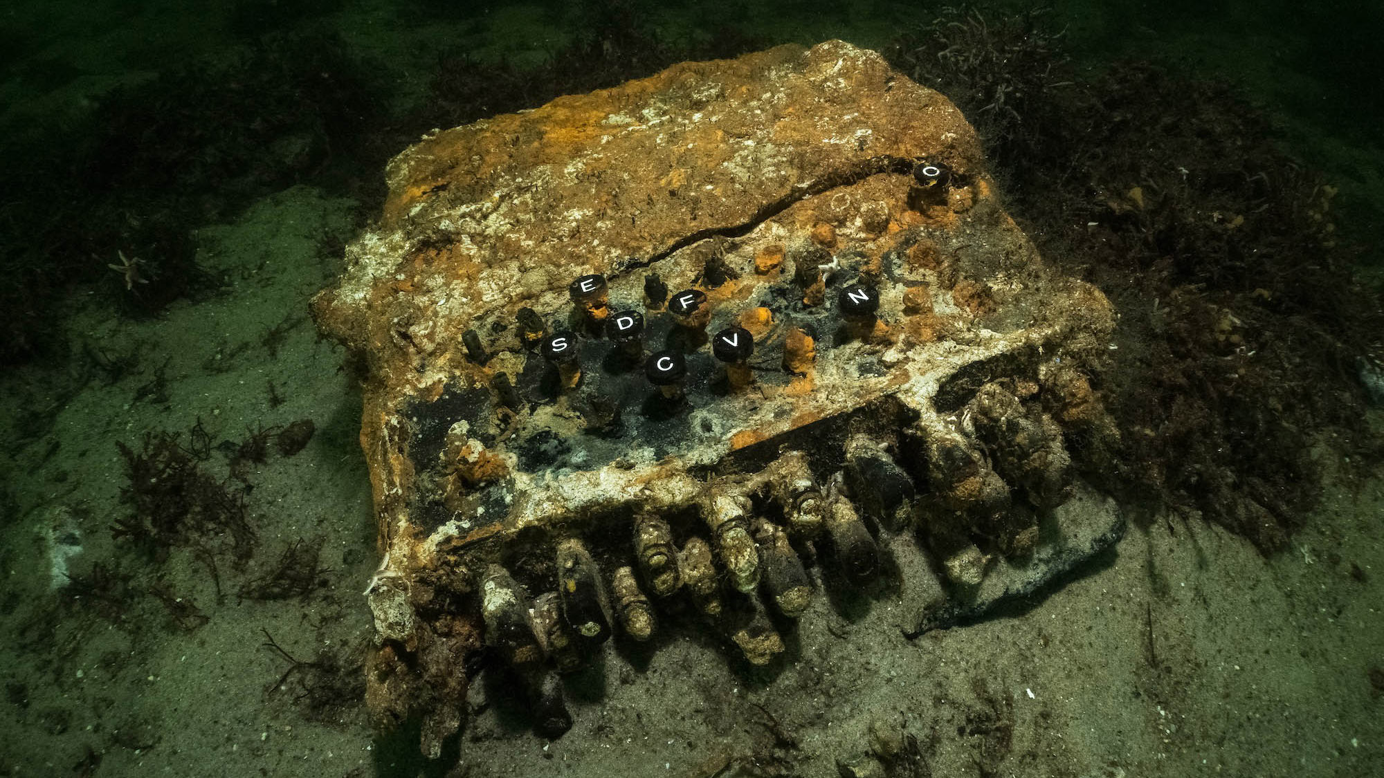 Nazi 'Enigma' machine found at the bottom of the Baltic Sea