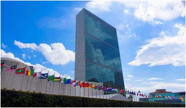 Where do UN Diplomats Hide During Politically-Sensitive Voting?