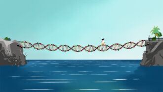 DNA databases are too white, so genetics doesn't help everyone. How do we fix that?