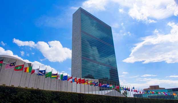 Profound Reform or Redundancy  United Nations' Quandary?