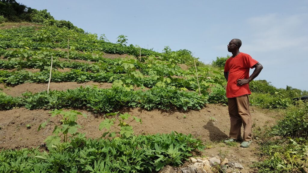 Soil for Survival: Countries Commit to Halt Land Degradation
