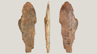 Stone Age people used bone scrapers to make leather and pelts