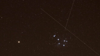 Satellite swarms may outshine the night sky's natural constellations
