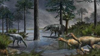 A volcano-induced rainy period made Earth's climate dinosaur-friendly