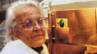 By taking on poliovirus, Marguerite Vogt transformed the study of all viruses