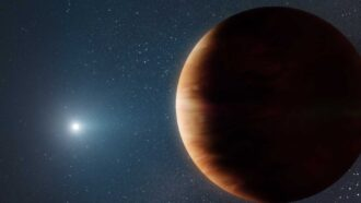 A Jupiter-like planet orbiting a white dwarf hints at our solar system's future