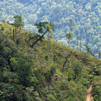 From the Field: Costa Rica points the way to a sustainable world